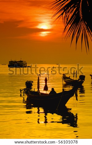 Sunset with palm and longtail boats on tropical beach. Ko Tao island, Thailand - stock photo