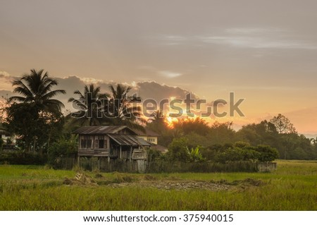 sunset with rice field view, Thailand - stock photo