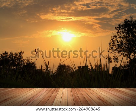 Sunset with silhouette leaves foreground with wood pave way - stock photo
