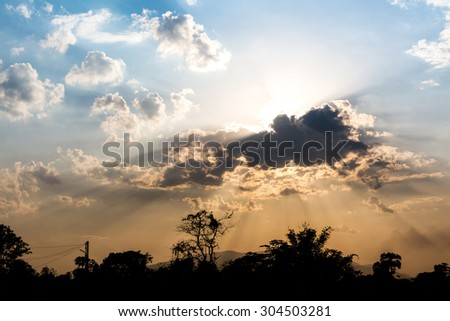 Sunset with tree silhouette - stock photo