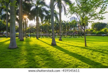 Sunshine city park - stock photo
