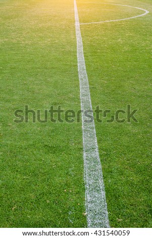 Sunshine in soccer field with white lines