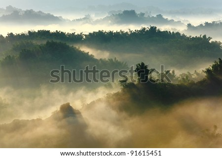 sunshine on the morning mist with bamboo and hill - stock photo