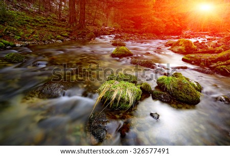 Sunshine over mountain river in forest - stock photo
