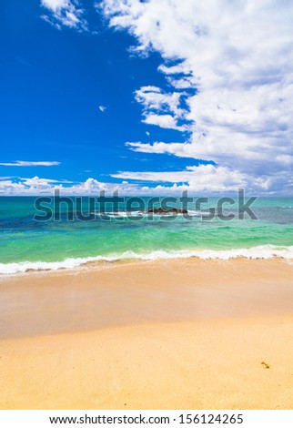 Sunshine Surf Divine Coastline