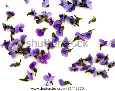 Super Macro Floral Background - stock photo