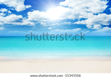 Superb Beach at Summertime