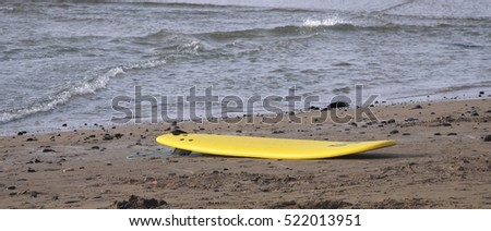 surf board on the beach, here comes the rain