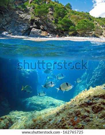 Surface and underwater view with a Mediterranean beach and seabed with fish, Costa Brava, Rosas, Catalonia, Spain - stock photo