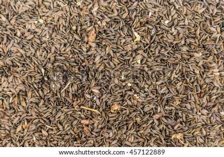 Surface covered with seeds as a backdrop texture