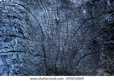 Surface of the wood are catch fire. - stock photo