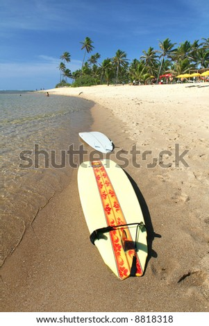 Surfboards laying on the beach - stock photo