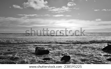 Surfer heading out to the ocean's horizon in Malibu, California. - stock photo