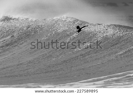 Surfer Wave Paddle Over Vintage Surfer paddles over ocean wave swells cresting about to crash break on shallow shoreline reefs in black and white vintage mood tone. - stock photo