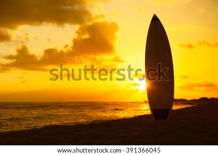 Surfs up! - stock photo