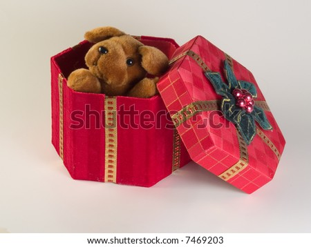 surprise gift - stock photo