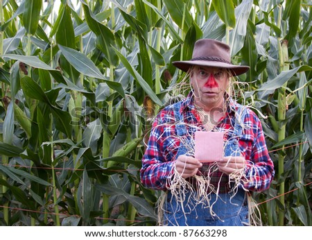 surprised scarecrow has pink slip in corn field - stock photo