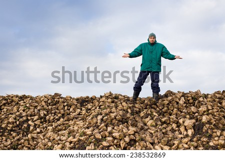 Surprised young peasant standing on pile of sugar beet - stock photo
