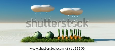 surprising growing vegetables in the desert - stock photo