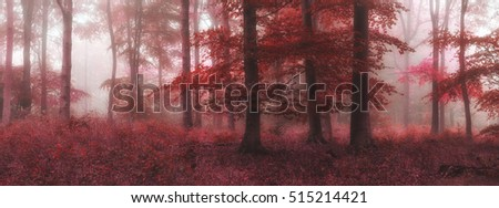 Surreal alternate color fantasy Autumn Fall forest landscape conceptual image