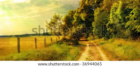 surreal golden countryside - stock photo