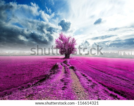 surreal landscape and tree on the road - stock photo