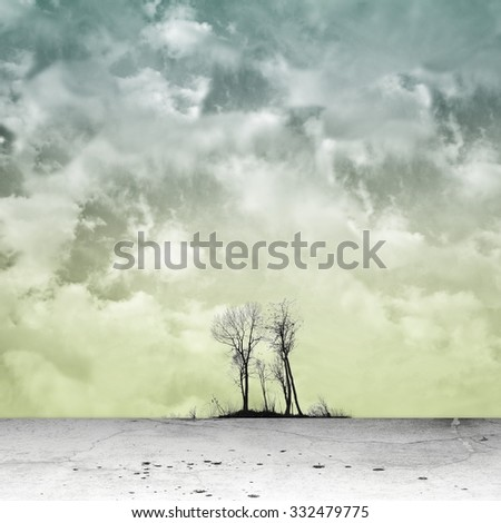 Surreal landscape with bare group of trees - stock photo