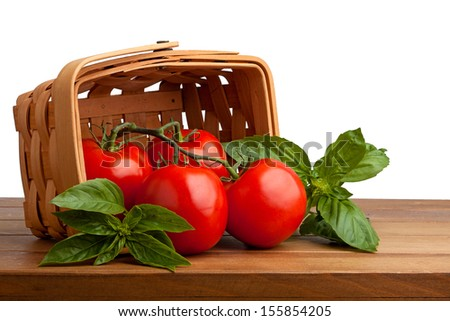 Surrounded by sweet basil, four red juicy vine ripened tomatoes fall out of a woven basket onto a wooden cutting. white background