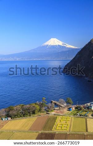 Suruga Bay and Mt. Fuji seen from Nishiizu Ita, Shizuoka, Japan - stock photo