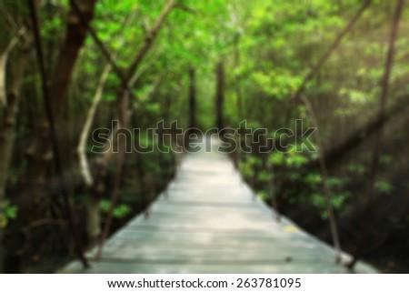 Suspension bridge in the forest blur background - stock photo