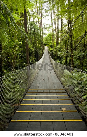 Suspension bridge in the tropical rain forest of Costa Rica - stock photo