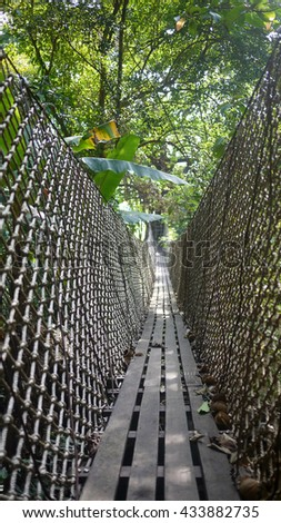 Suspension bridges from one tree to the destination,a zipline in bolaven plateau in southern Laos - stock photo