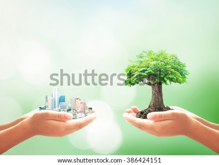 Sustainable concept. Plan Change Human CSR ROI  Building Eco Bio Soil Over Blur Sky Creation First Life Trust Saving Banking Debt Fund Ecology Year Week Idea Map Nature Month Energy Renewable Funding - stock photo