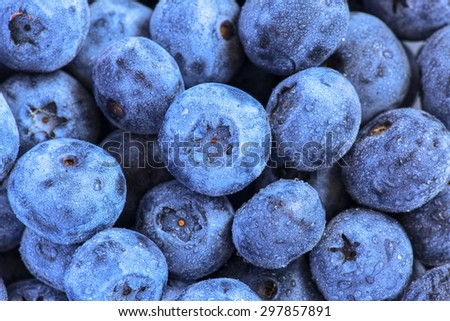 Swamp blueberry with water drops close up - stock photo