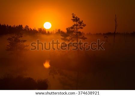 swamp lake at sunrice - stock photo