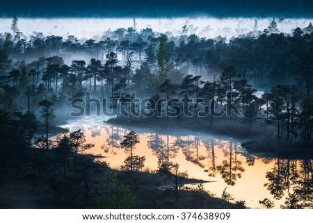 swamp lake at sunset - stock photo