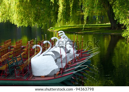 Swan boats at the Boston Public Garden in the Spring. - stock photo