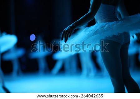 Swan lake ballet - stock photo