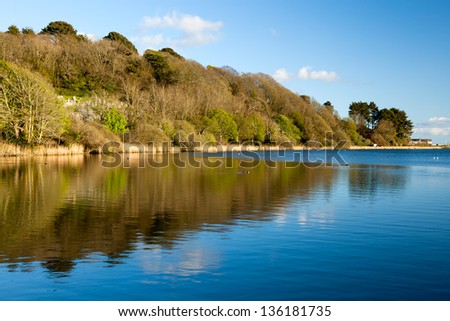 Swanpool Nature Reserve, Falmouth Cornwall England UK
