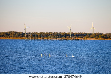 Swans and wind turbines on the coast of Baltic sea at sunset - stock photo
