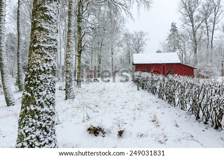 Swedish winter colors - stock photo