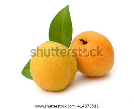 Sweet apricots on white background