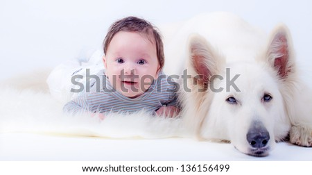 sweet baby and his friend, a swiss white shepherd dog - stock photo