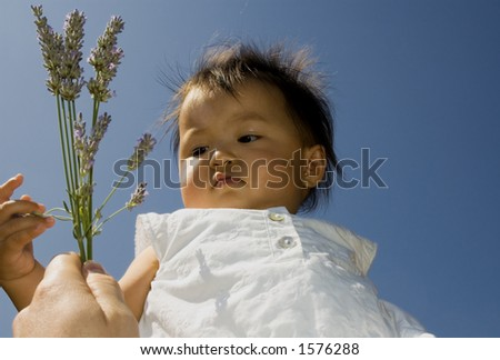 sweet baby girl lifted in the air, reaches for lavender - stock photo