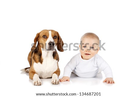 Sweet baby tries to touch a dog