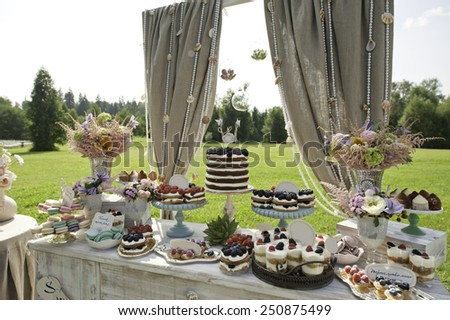 Sweet bar on summer wedding. Layer cake with protein cream and blackberries and other sweets outdoors
