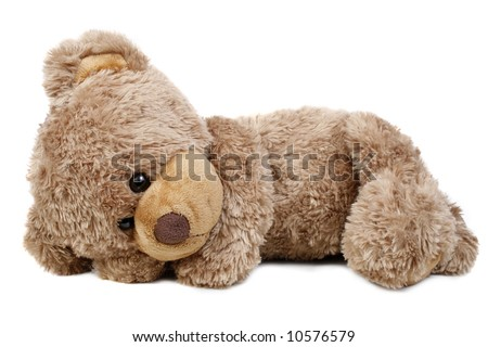 Sweet bear lying alone..isolated on white background - stock photo