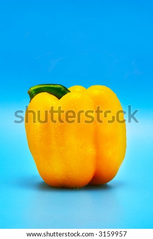 sweet bell pepper on a blue background with water droplets - stock photo