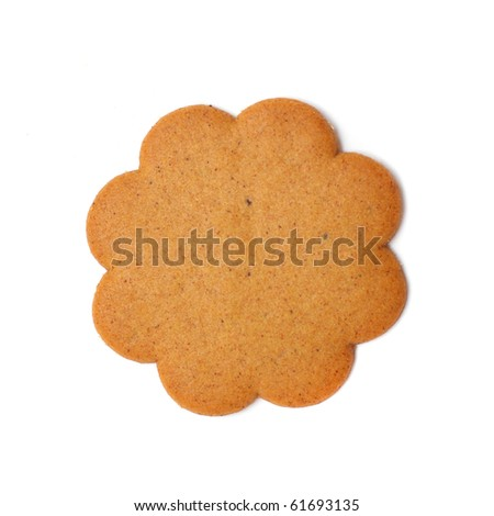 sweet brown cookie isolated on white background - stock photo