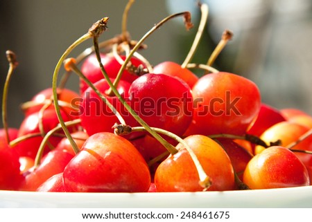 Sweet cherries - stock photo